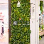 LNO-植物墙案例01