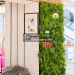 LNO-植物墙案例02