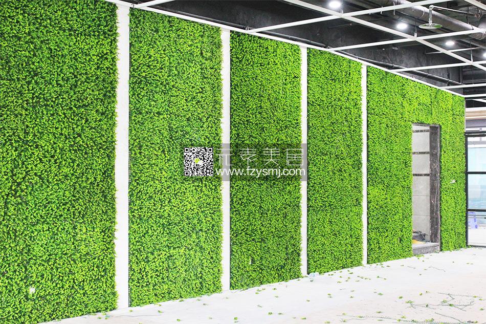 福州市酷动建设中心绿植墙