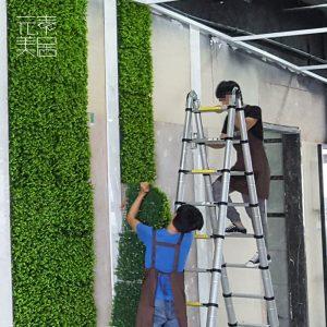 室内装饰墙面仿真植物墙zt(4)